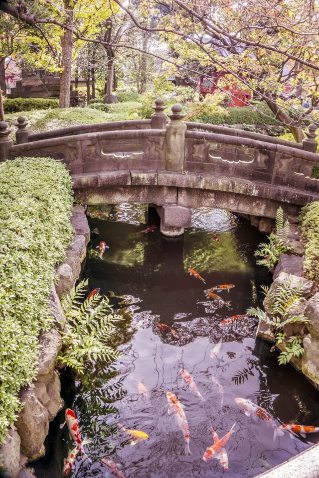 Things to Do in Asakusa | Tokyo Places to Visit: Sensoji Garden | #Asakusa #Tokyo #ThingstoDoinAsakusa #Sensoji #JapaneseGarden #Nakamise